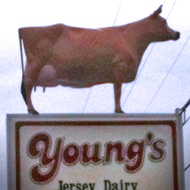 Young's Jersey Dairy, Yellow Springs, OH