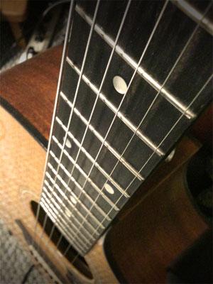 My Taylor Guitar